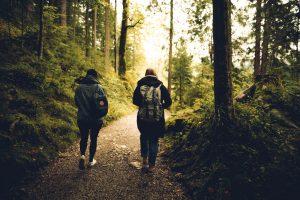 Eco-friendly campervan holiday - People walking in the woods